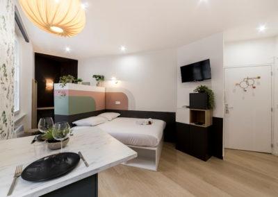 salon, canapé-lit, plantes verte, luminaire et table design